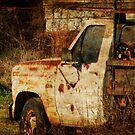 Rusty Truck by Ginger  Barritt