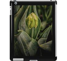Spring time Tulip iPad Case/Skin