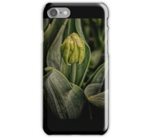 Spring time Tulip iPhone Case/Skin