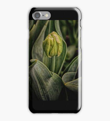 Spring time Tulip iPhone Case/Skin