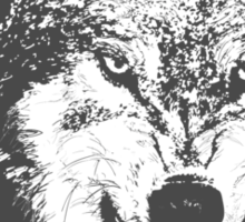 Angry Wolf in Black Sticker