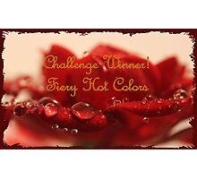 Banner - FHC - Challenge Winner Photographic Print