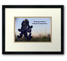 Banner - ABTE - Challenge Winner Framed Print
