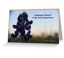 Banner - ABTE - Challenge Winner Greeting Card