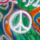 Peace Symbol  by L2Photography