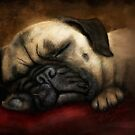 Napping Pug by Peyton Duncan
