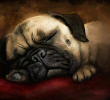 Napping Pug by Peyton Duncan