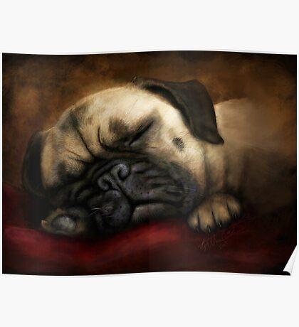 Napping Pug Poster