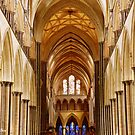 Salisbury Cathedral by Shiva77