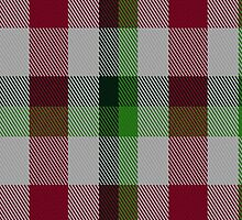 02258 Arisaid Say What (Unidentified) Tartan Fabric Print Iphone Case by Detnecs2013