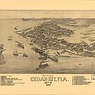 Vintage Pictorial Map of Cedar Key Florida (1884) by alleycatshirts
