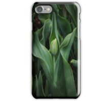 Spring time Tulip 1 iPhone Case/Skin