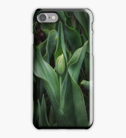 Spring time Tulip 1 iPhone Case/Skin
