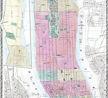 Vintage Map of New York City (1865) by alleycatshirts