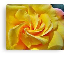 Pimp My Rose  Canvas Print