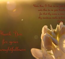 Thank You For Your Thoughtfullness by aprilann