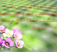 Who Wants Eternal Life? by aprilann