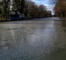 Frozen Canal in Berkshire by mlphoto