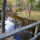 Latimore Creek Bridge in Fall by 319media