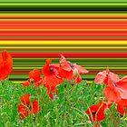 Poppy explosion by Thomas Tolkien