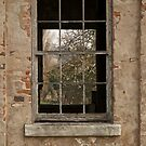 Window in window by brilightning