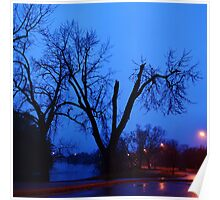 Rainy Springtime Trees At Dusk Poster