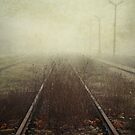 track by passerby2