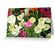 Open Tulips Greeting Card