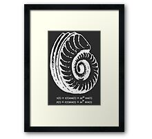 Spiral Shell with Math (white) Framed Print