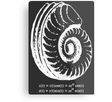 Spiral Shell with Math (white) Metal Print
