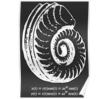 Spiral Shell with Math (white) Poster