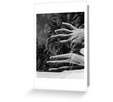 my winter bird Greeting Card