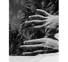 my winter bird Photographic Print