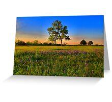 Bluebonnet Fields in Texas Greeting Card