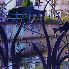 Fish Gate, Union Canal, Edinburgh by Sue Fallon Photography