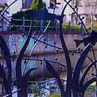 Fish Gate, Union Canal, Edinburgh by Sue Fallon Photography