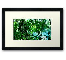 Rhododendrons in Smoke Framed Print