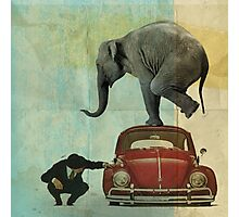 Looking for Tiny _ elephant on a red VW Photographic Print