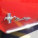 Mustang by WildestArt