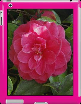 camelia pink ipad case by dedmanshootn