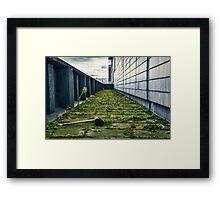 Abandoned Brush Framed Print