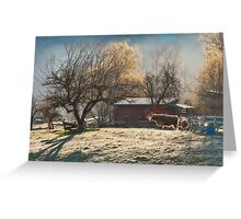 Morning Farmyard 1  Greeting Card