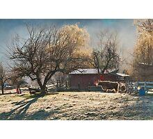 Morning Farmyard 1  Photographic Print