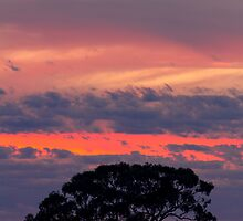 Hay Plains Sunrise by Mark Cooper