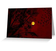 Red Sky - 031 Greeting Card