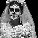 Dia de los Muertos by Heather Friedman