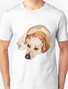 Boomer Pitbull Rescue T-Shirt