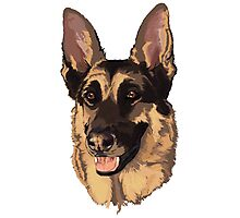 Candy German Sheppard Rescue Photographic Print