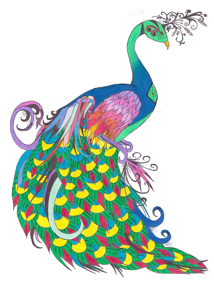 Quot Rainbow Peacock Quot By Riley J Broadbent Redbubble