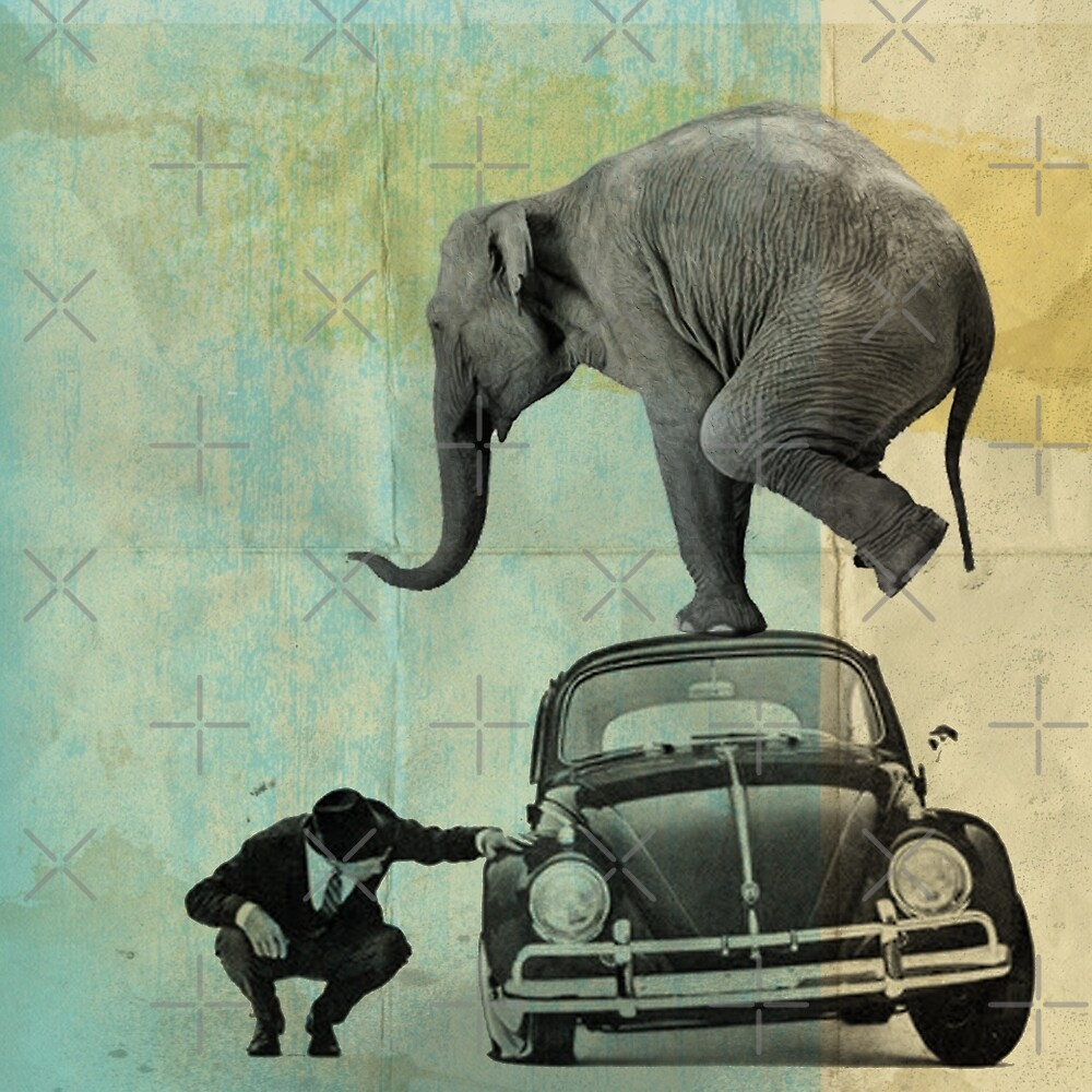 Looking for tiny, elephant on a vw by Vin  Zzep